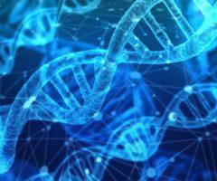 Wil je weten of jouw familie wel jouw biologische familie is? Hier vind je de antwoorden die je zoekt!